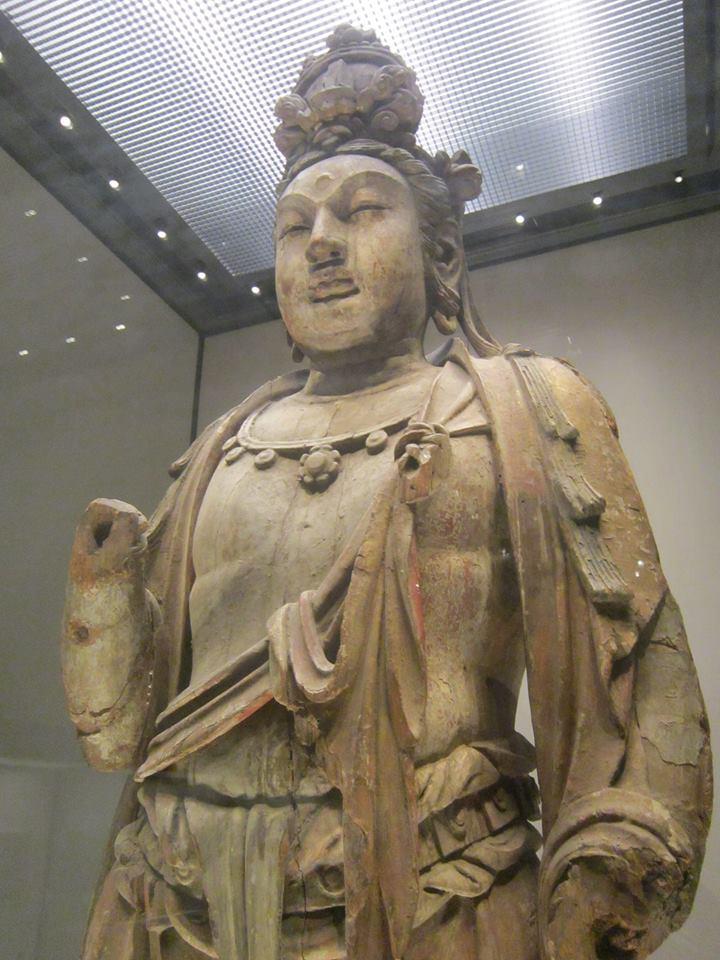 museo de historia natural en beijing